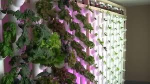 joe neumayer basement hydroponic tower garden youtube
