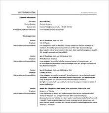 Java Developer Resume Template Download Java Developer Resume Haadyaooverbayresort Com
