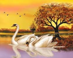 ribbons for sale diamond painting white swans landscape diy 3d diamond