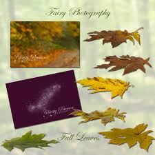 christy peterson whimsical fairy tale digital downloads