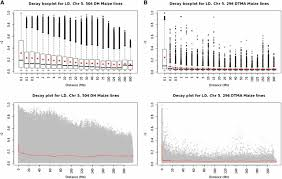 genomic prediction in maize breeding populations with genotyping