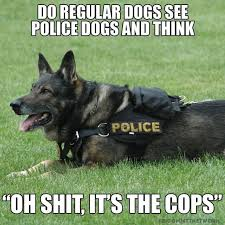 Frowning Dog Meme - elegant dog regular dogs see police dogs meme wallpaper site