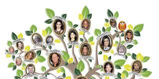 kardashian family tree gets reveal ed in kardashian passion special