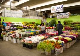 flower wholesale s m wholesale flowers inc dba ramiro s wholesale flowers
