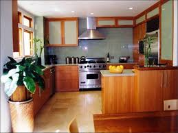 kitchen cabinet interiors kitchen delightful kitchen cabinet discounters thecritui