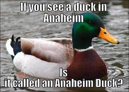 Anaheim Ducks Memes - anaheim duck quickmeme