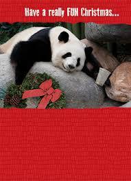christmas cards christmas photo cards u0026 holiday cards cardfool
