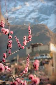 Ideas Image by Hunza Valley Wikipedia