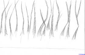 draw an eerie forest step by step drawing sheets added by