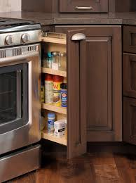 Kitchen Cabinets Pictures Gallery by Mullet Cabinet U2014 Brown Condominium Kitchen