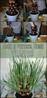8 best house idea for plants images on pinterest gardening