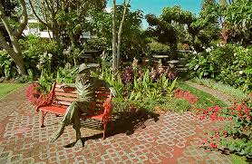 Botanical Gardens Hotel Photograph Of The Botanical Garden Of The Hotel Bougainvillea In