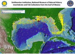 map of the gulf of mexico map of gulf of mexico collection smithsonian portal