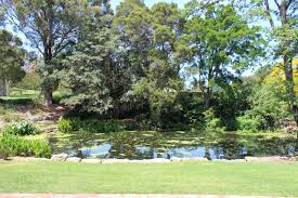 Wollongong Botanic Gardens A Beautiful Pond At The Wollongong Botanic Garden Nsw Sydney