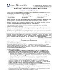 Director Level Resume Examples by Business Intelligence Analyst Resume Samples Xpertresumes Com