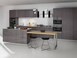 Pictures Of Modern Kitchen Cabinets Modern Rta Kitchen Cabinets Usa And Canada