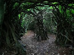 maze tree rabbi mychal copeland