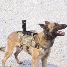 belgian shepherd special forces gear review k9 products special operations k9 harness u2013 spear