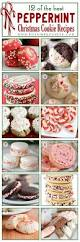 12 of the best peppermint christmas cookies recipes posh in progress