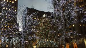 new york city december 2014 christmas tree and lights in