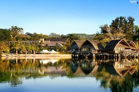 bungalows the hotel oceania vegetation vanuatu beautiful