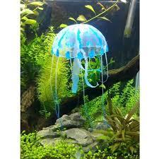 44 best fish tank images on aquarium ideas fish tanks