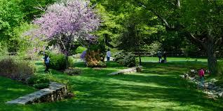 Arboretum arnold arboretum of harvard university american public gardens