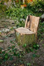 30 best tree stump garden ideas images on pinterest garden ideas