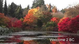 fall colors vandusen garden vancouver bc 3