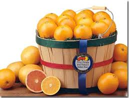florida gift baskets florida fruit gift baskets and combo packs