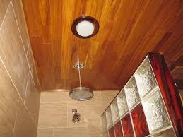 Bamboo Floors In Bathroom Decorative Glass Block Shower Bamboo Porcelian Tiles U0026 Cocobolo
