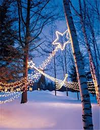 solar christmas lights 33 best outdoor solar christmas lights images on