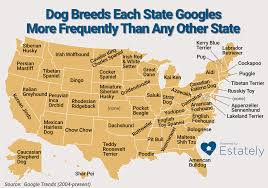 Mexican State Map by These Are The Dog Breeds Each State Googles More Frequently Than
