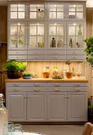 Chinese Kitchen Cabinet by Tips Classic Interior Wood Storage Ideas With China Cabinet Ikea