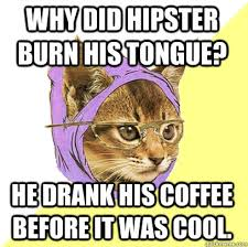 Hipster Cat Meme - why did hipster burn his tongue cat meme cat planet cat planet