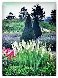 27 best landscaping images on pinterest landscaping ideas