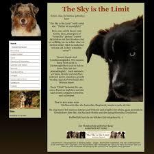australian shepherd zu verkaufen create your own free website with our website builder page4