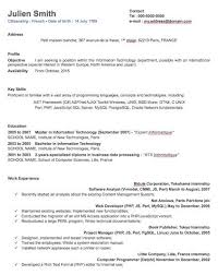 Free Job Resume by Professional Resume Template Free