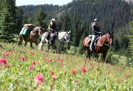how far can a horse travel in a day images Multi day horseback ride tours tyax adventures jpg
