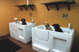 Bathtubs For Dogs Self Serve Dog Wash U2013 Hollywood Feed