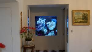 Aquarium For Home Decoration Chicago Custom Aquariums U0026 Fish Tank Company