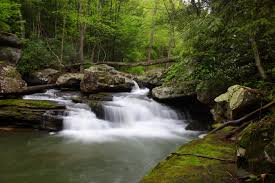 West Virginia forest images Waterfall west virginia forest spring waterfalls free nature jpg