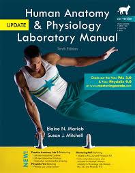 Human Anatomy And Physiology Marieb 7th Edition Marieb U0026 Mitchell Human Anatomy U0026 Physiology Laboratory Manual