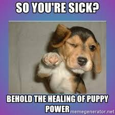 Sick Puppy Meme - so you re sick behold the healing of puppy power get well soon