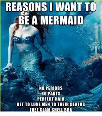 Mermaid Meme - reasons i want to be a mermaid no periods no pants perfect hair