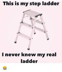 Ladder Meme - this is my step ladder i never knew my real ladder meme on me me