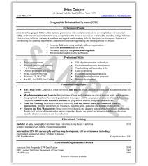 Federal Government Resume Writing Service Family In The Godfather Essay Sample Resume Administrative