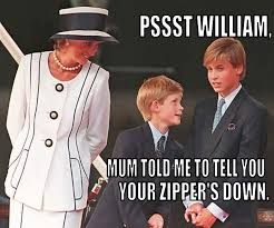 Royal Family Memes - extremely funny pictures of british royals google search memes