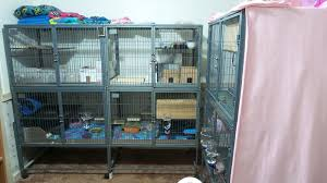 Large Ferret Cage Creating A Double Double Wide Ferret Nation 142 Cage Youtube