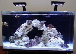 best lighting for corals best fish tanks top 10 picks in 2018 with reviews guide